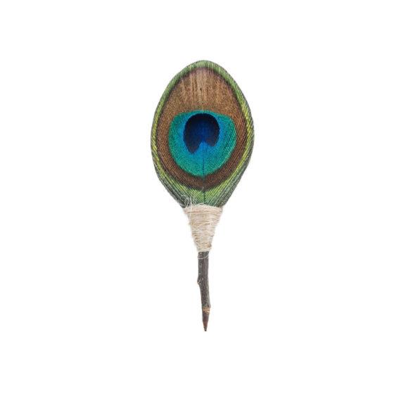 Plum Thicket Pin - Jekyll (Peacock) 2