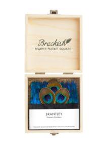 Brantley – Peacock – Pocketsquare
