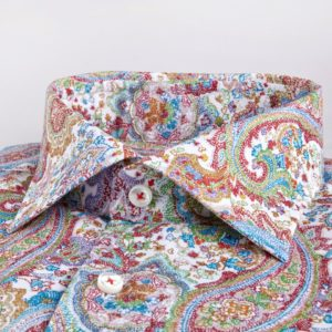 Paisley Patterned 2